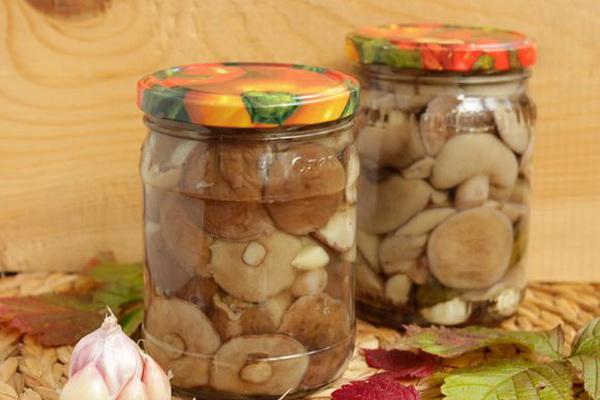 маринад для грибов на зиму
